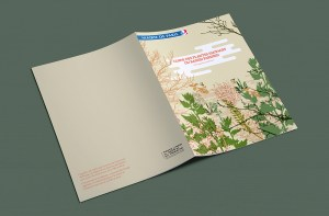 Catalogue-plantes-indigenes-03