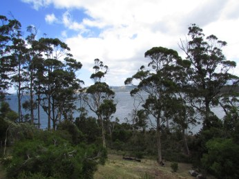 View from cottage, Randalls Bay