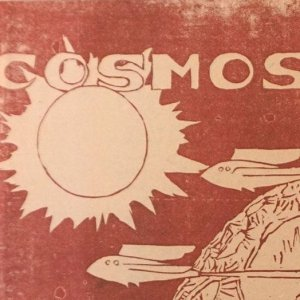 Cosmos cover