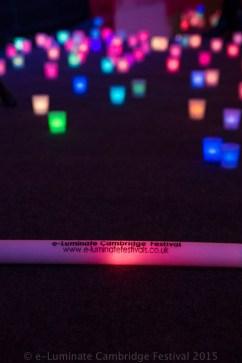 e-Luminate Cambridge Festival 2015 Lucinda price Photography