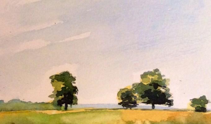 Trees at Sparkford