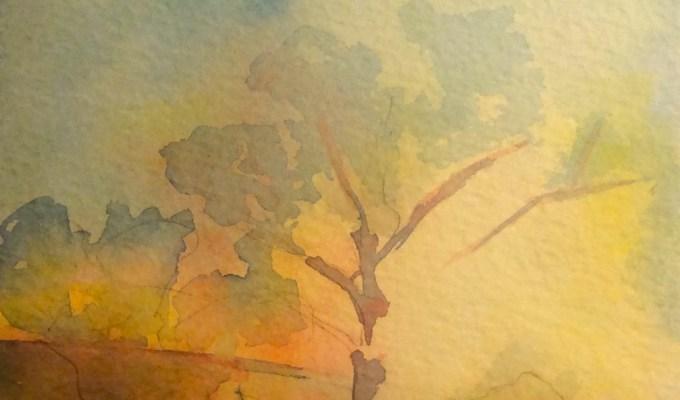 Tree, Misty Morning II