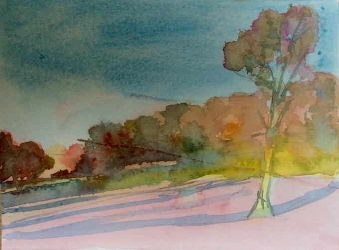 Tree, February Sun, watercolour 15 X11 cm.