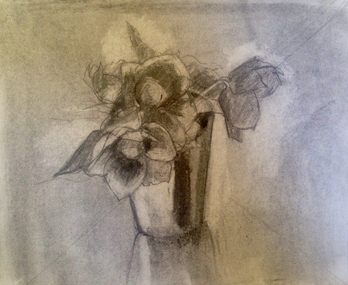 Hellebore, charcoal and graphite on paper, 20 x22 cm.