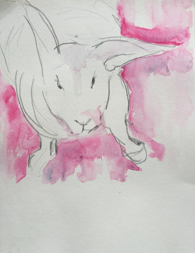 Rex II, watercolour, 15 x22cm