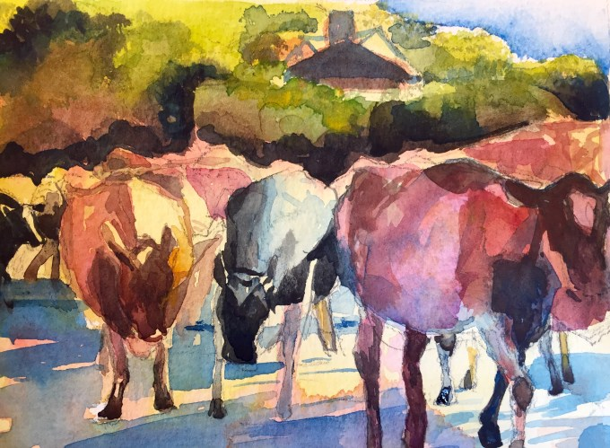 Cows passing, Watercolour 12 x18cm