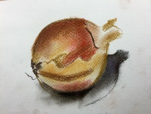 Onion, pastel on paper, 10 x 5 cm