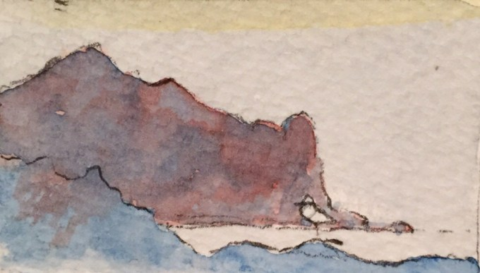 Gull at Gully, watercolour, 12 x 5 cm