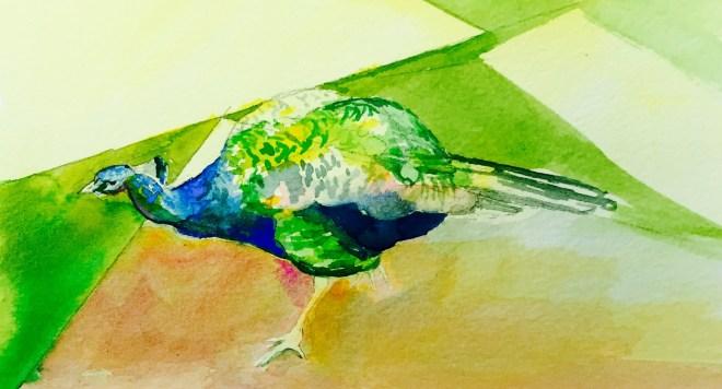 Festival Peacock, Watercolour, 12 x17 cm