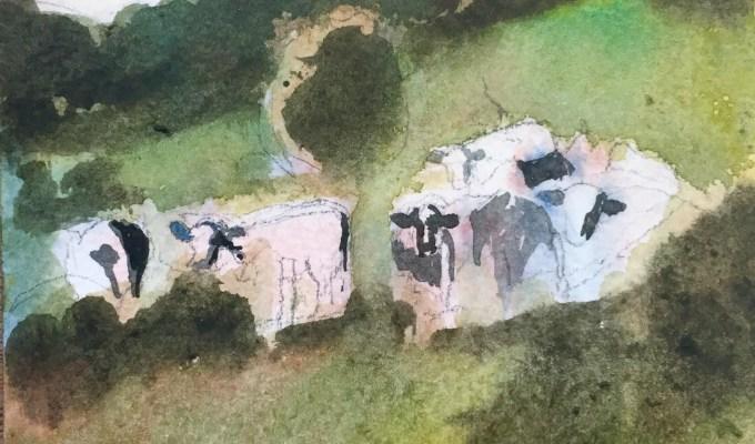 Herding Cows III