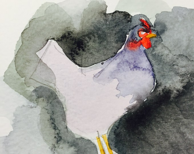 Hen, watercolour sketch