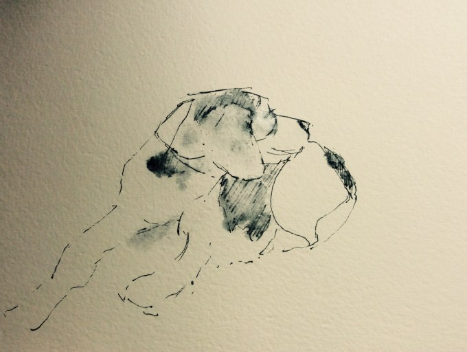 Pooch on the Beach, pen and ink sketch.