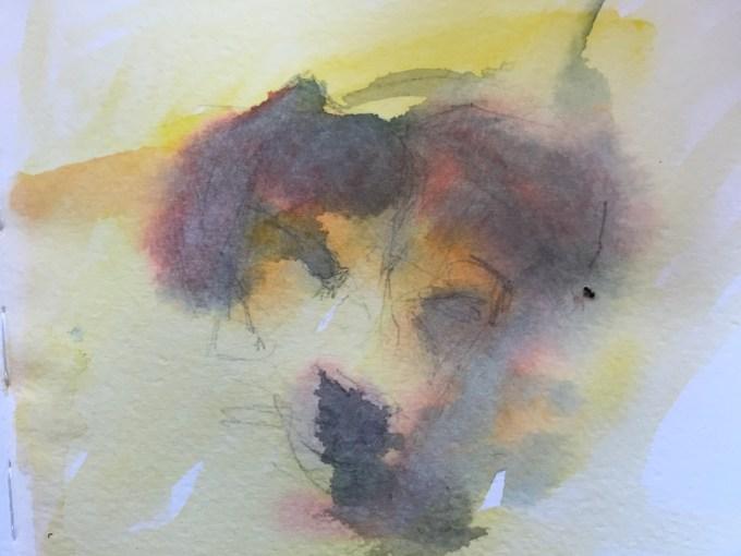Pooch Musing, watercolour sketch