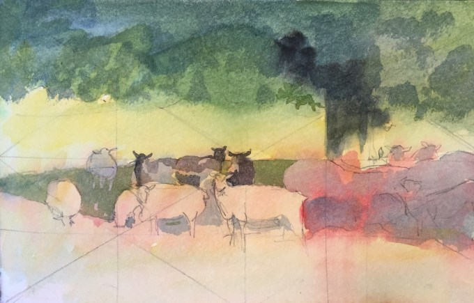 Sheep in shade, watercolour sketch.