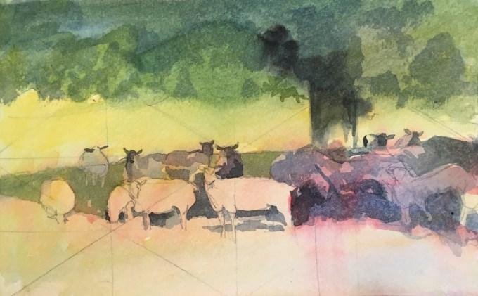 Sheep in shade, watercolour sketch.
