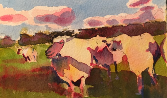 Sheep, late November  II