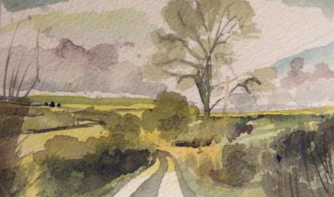Sedgehill, November