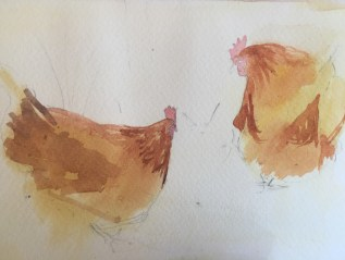 Cold Hens