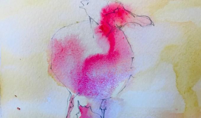 Toe nipping baby gull