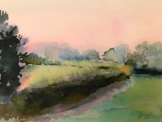 Misty Hedge, East Knoyle.
