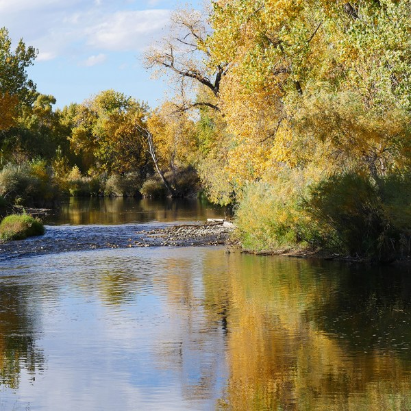 Photos of Arapaho Bend Natural Area (Fort Collins, Colorado)