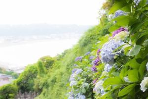 5月の春夏デートスポットおすすめランキング!カップルでおでかけしよう