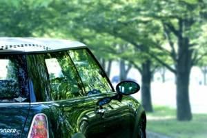 プロポーズの場所はドライブ後に車内で【サプライズ演出が花束が人気おすすめ】