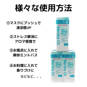 【大洋製薬】ハッカ油スプレータイプ