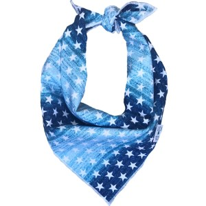 dog bandana for the 4th of july