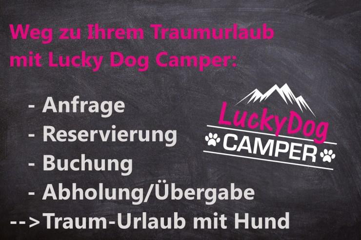 Ablauf Lucky Dog Camper