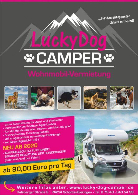 Lucky Dog Camper Flyer 2020