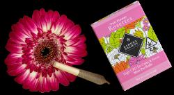 Garden Society Rosettes CBD Prerolls