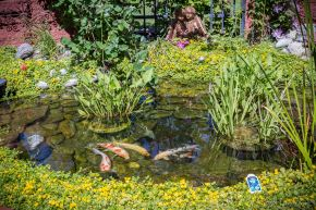 20140628 Loveland Garden Tour-59_WEB