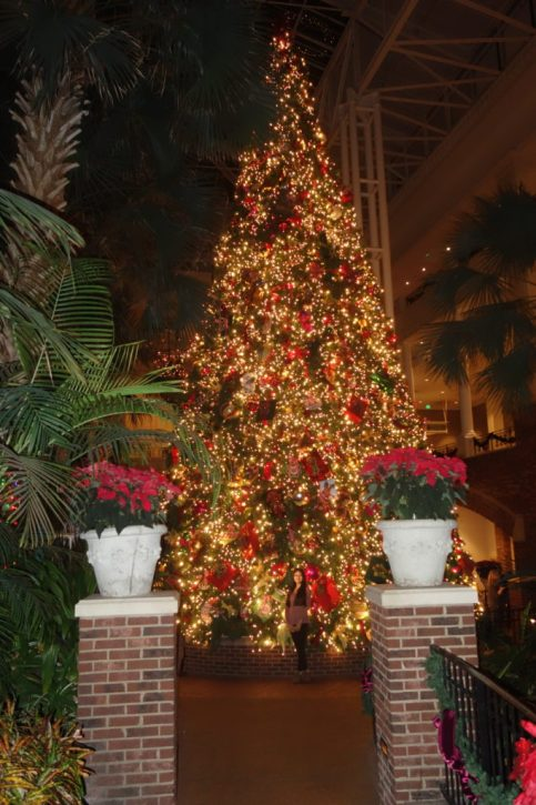 Christmas tree in Gaylord Opryland Hotel in Nashville