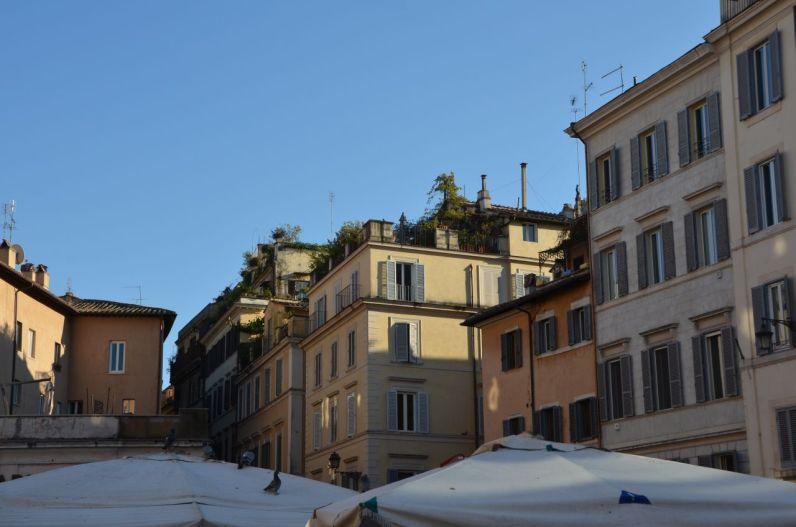 Roma (18)
