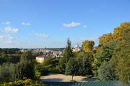 Roma (35)