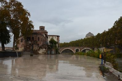 Roma (58)