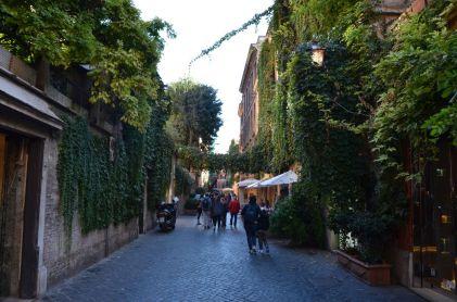 Roma (8)