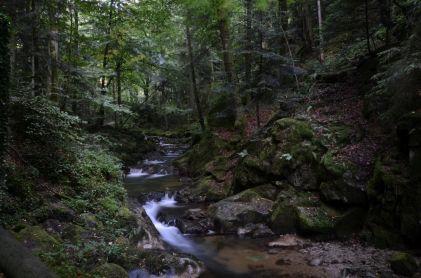 Weg zu den Geroldsauer Wasserfällen