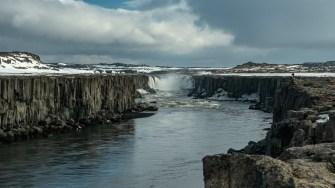 Island - Tag5-20