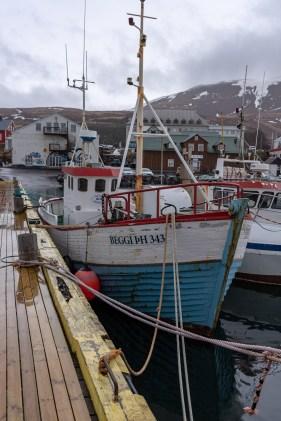 Island - Tag6x-13