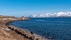 Island - Tag8 (14)