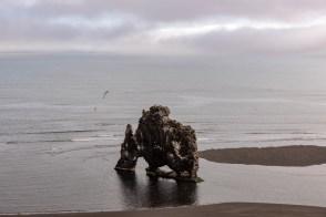 Island - Tag9 (3)