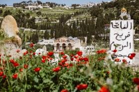 Israel-Jerusalem-Tag10-11-28
