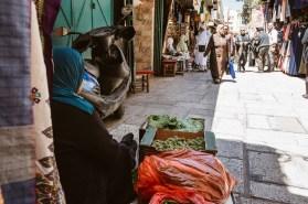 Israel-Jerusalem-Tag8-9-46