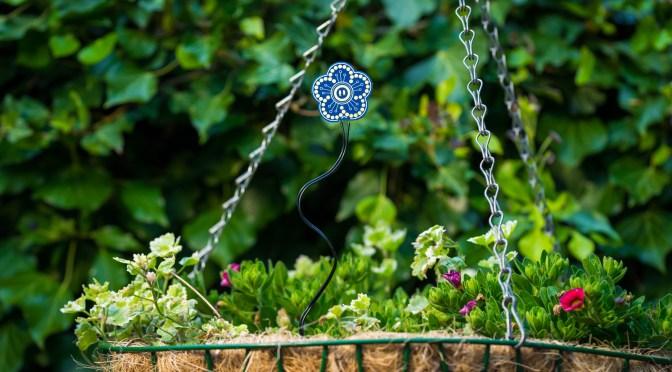 Plant Watering Sensor Files
