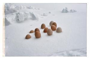 La surprise de Pâques - Easter surprise / Luc Pallegoix, 2013.