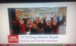 The  Funniest Bbc News Captions Of All Time