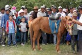 Prize-giving for the Naadam horse racing, Chandmani
