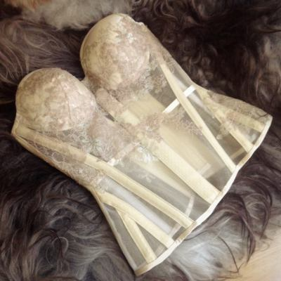 Sparklewren sheer bridal overbust with cups